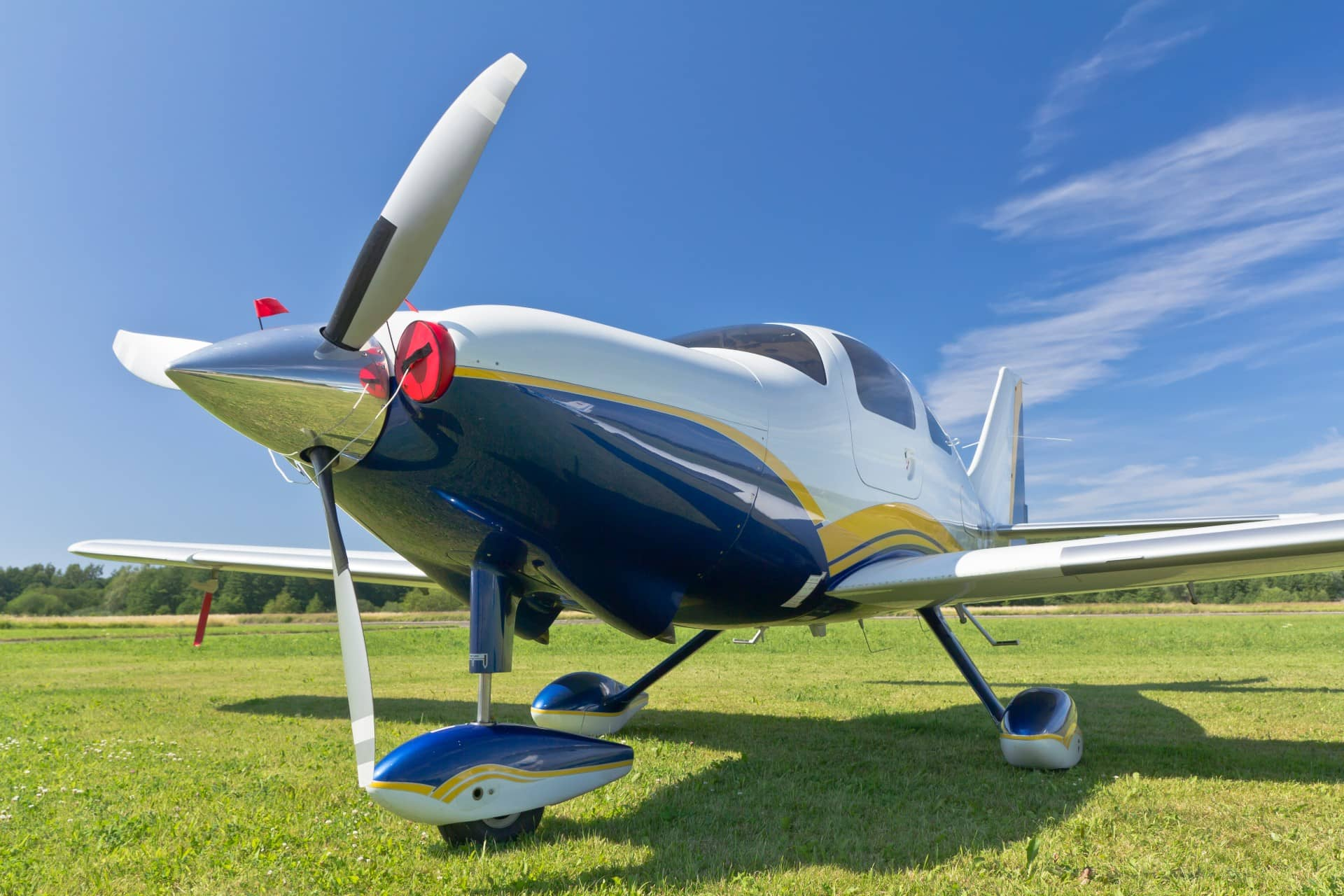 A white and blue plane parked on the grass